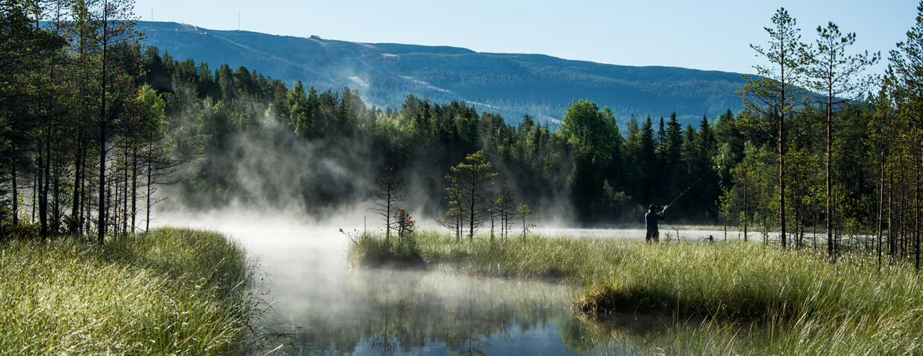 Man som fiskar i en fjälltjärn med dimma.