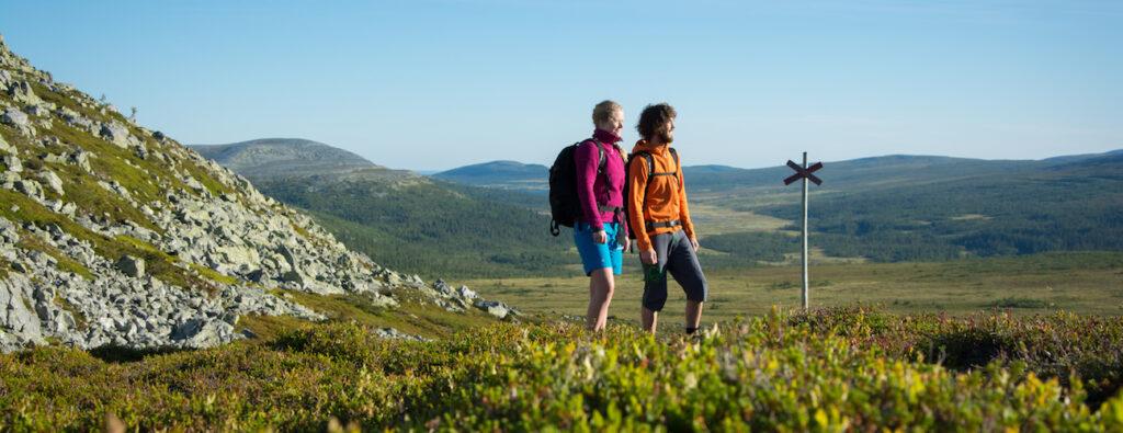 7 Turtips för Vandring i Vemdalen Vandringsbloggen